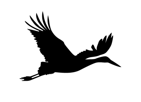 beginnings: Stork bird. Vector silhouette black on white Illustration