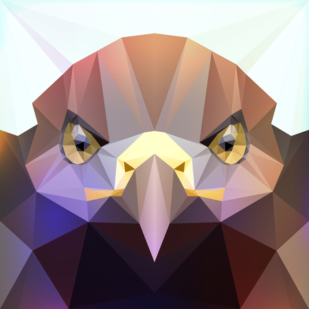 formidable: Wild eagle bird head. Polygonal vector illustration