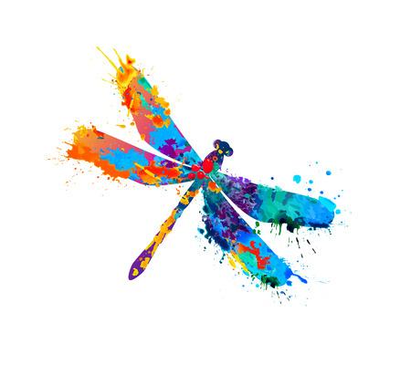 Vector libellula di arcobaleno pittura ad acquerello spruzzi Vettoriali