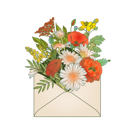 Envelope with assorted flowers (poppy, chamomile, et?.)