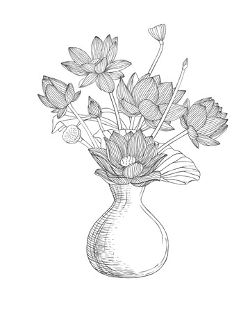 colorless: Vase with lotus flowers. Linear illustration black on white