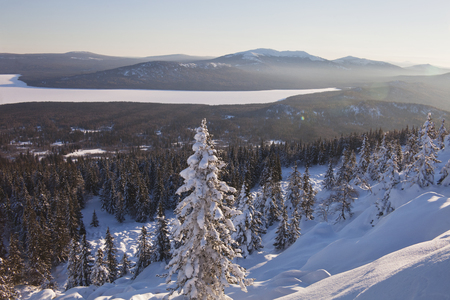 swept: View of lake from mountain range Zyuratkul, winter landscape. Snow covered lonely spruce