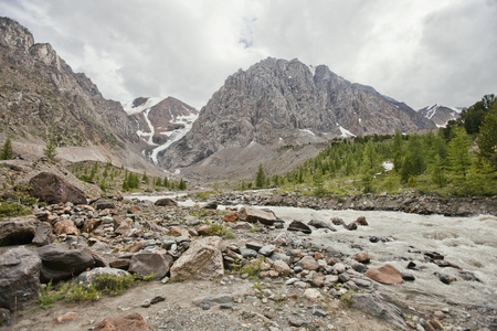 aktru: Aktru glacier River. Altai Mountains summer landscape