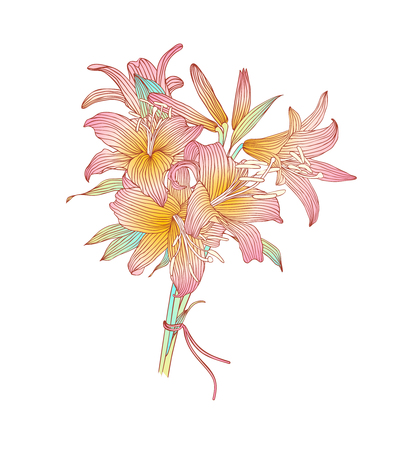 pink lily: pink lily flowers bouquet on white background