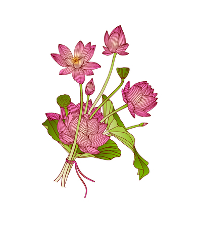 vector illustration of lotus flower bouquet on white background