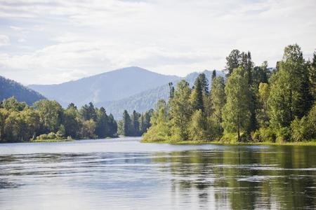 Biya river landscape. Altai mountains. Russian nature Banco de Imagens - 77188396