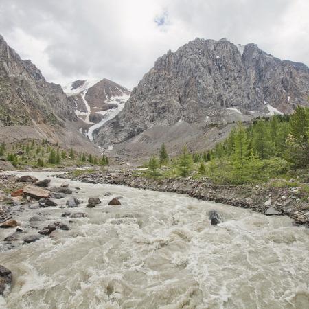 Aktru glacier River. Altai Mountains summer landscape