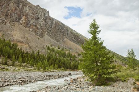 Aktru ?????, Altai Mountains landscape. Wild nature Stock Photo