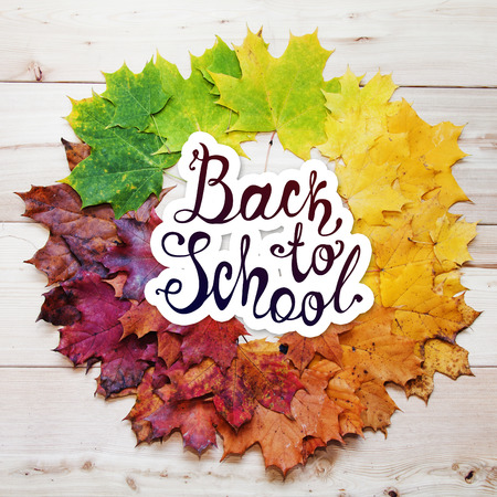 fall leaves: Back to school. September 1 holiday. Vector hand drawn lettering. Frame of fall maple leaves Stock Photo