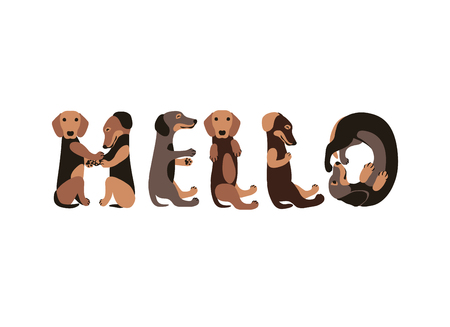 Hello. Vector Inscription of dachshund dogs letters Illustration