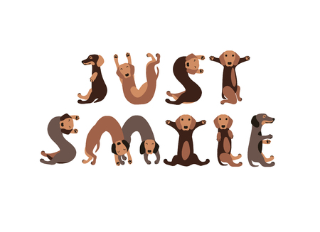 Dachshund dogs forming letters. Ilustrace