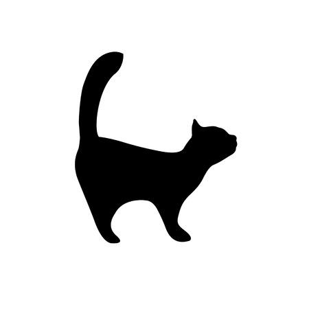 Kitten black silhouette on white background. Cat icon Stock Vector - 89266781