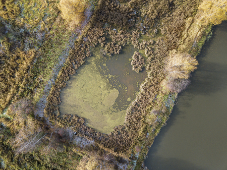 Small lake (swamp). Moscow region. Russian landscape. Aerial view Stock fotó