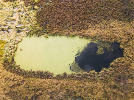 Small lake (swamp). Moscow region. Russia. Aerial view landscape Stock fotó