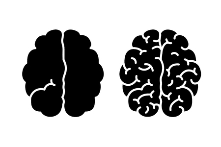 Smart and stupid. Hemispheres of the brain with one and with many gyrus