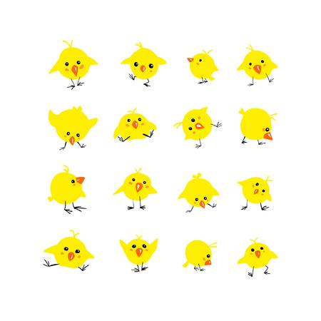 Set di 16 pulcini semplici piatti gialli vettoriali su sfondo bianco