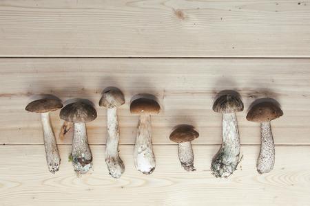 knot of boletus mushrooms on wooden background