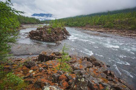 Island on Hoisey River Gorge, Putorana Plateau, Taimyr. Russia, Siberia