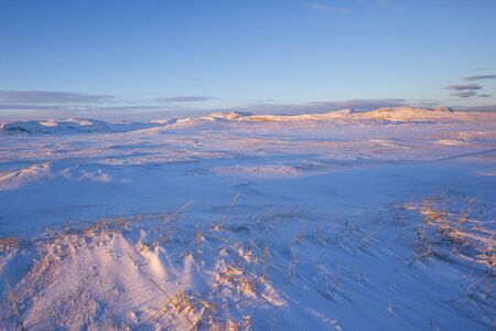 Snow desert. Kola Peninsula winter morning landscape