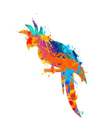 Parrot icon of vector watercolor splash paint