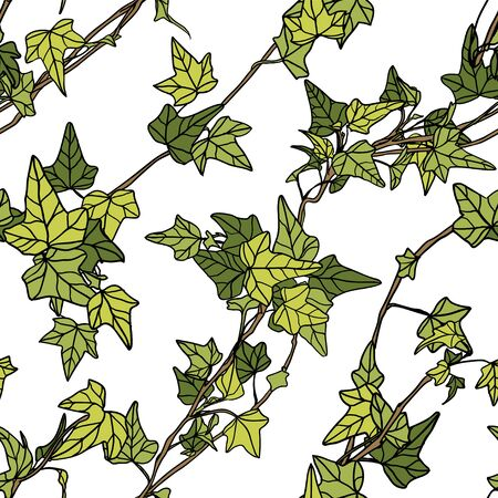 Seamless vector pattern of ivy leaves on white background