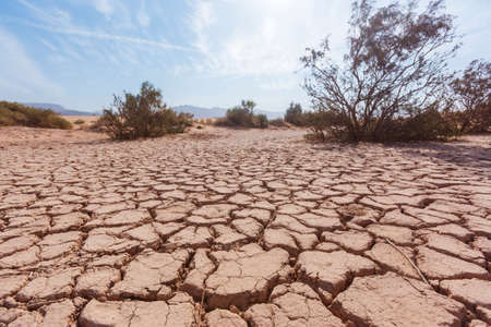 Dry cracked soil in the Wadi Araba desert. Jordan landscape