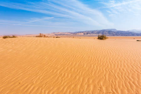 Sand Dune in the Wadi Araba desert. Jordan landscape 版權商用圖片