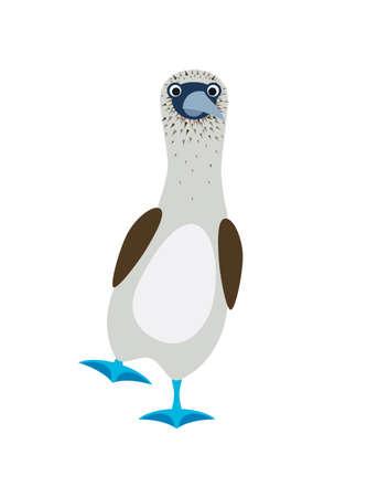 gannets bird with a blue feet. Flat vector illustration