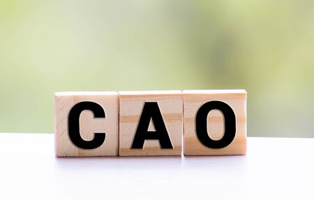 Word CAO made with wood building blocks on a gray background Banque d'images