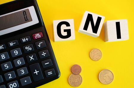 Wooden blocks with the word Gni and up arrow. Gross national income is the sum of a nation's gross domestic product and the net income it receives from overseas. Labor productivity increase. Growth Stockfoto