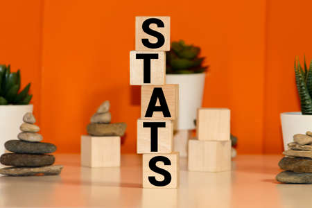 STATS word written on wood block 免版税图像