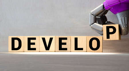 Word develop made with wood building blocks 免版税图像