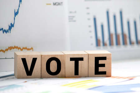Vote, word in 3d wooden alphabet letters isolated on red background.
