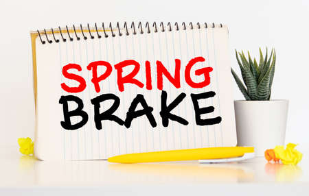 Word writing text Spring Brake. Business concept for Easter week School vacation for students Party Relax Leisure Banque d'images