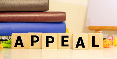 APPEAL word on wood blocks business concept