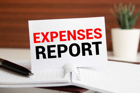 Expense report. The text label in the form of planning. Business research of accounting activity of the enterprise and its assessment.