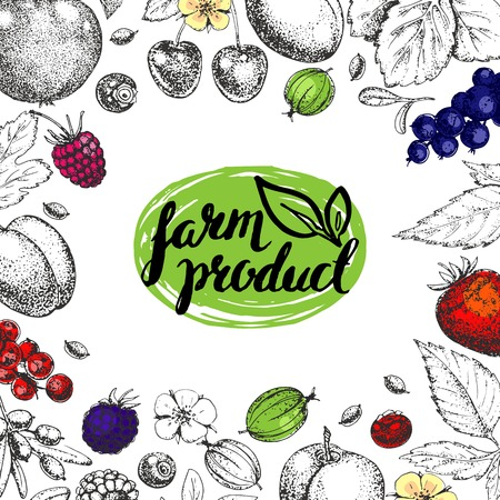 farmers market: Vector Healthy Food template. Vintage farm logo, fruits and berries. Logotype. Hand drawn. Farmers market. Style of etching. Sketch. Vegetarian fresh farm product. Eco, raw, organic, bio, natural.
