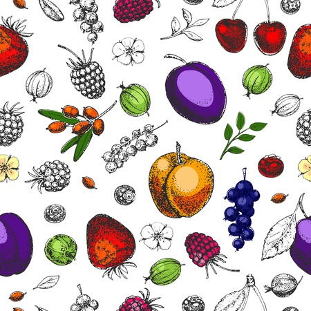 Seamless vector hand drawn pattern. Fruits and berries. Vitamins. Vintage illustration. Engraving. Healthy food. Strawberry, cherry, raspberry, blackberry, gooseberry,  plum, apricot, currant. Sketch.