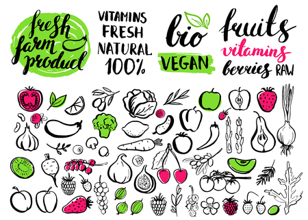 Vector handwritten food elements with rough edges. Healthy food, farm, fresh, vegan, natural, product, bio. Green market. Ink brush hand lettering.Fruits, berries and vegetables. Lettering. Icon.