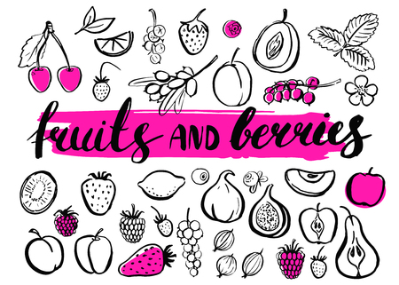 Vector handwritten food elements with rough edges. Healthy food, farm, fresh, vegan, natural, product, bio. Green market. Ink brush hand lettering.Fruits and berries. Lettering. Icons. Calligraphy.