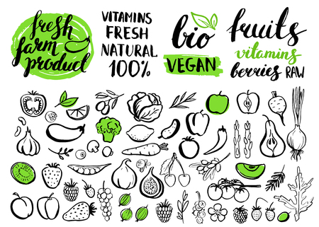 food market: Vector handwritten food elements with rough edges. Healthy food, farm, fresh, vegan, natural, product, bio. Green market. Ink brush hand lettering.Fruits, berries and vegetables. Lettering. Icon.