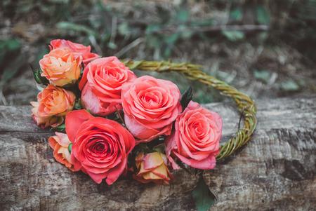 floristics: roses