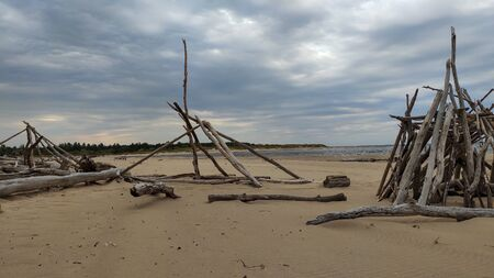 The Gauja River Flows Into the Baltic Sea Sea Gulf of Riga. Broken Pines After Storm and Washed Up Shore. Tree Trunks Washed a Shore in the Beach Coast With Eroded Beach Stock Photo - 135321752