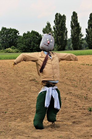 An image of a scarecrow - nature