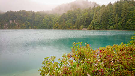 A glimpse through the bushes at the mountain lake. In the background, the mountains are covered in thick fog Imagens