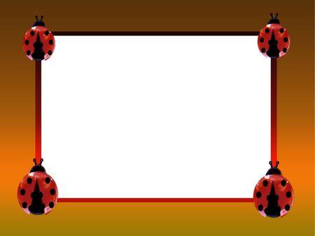 lady beetle: ladybug Stock Photo