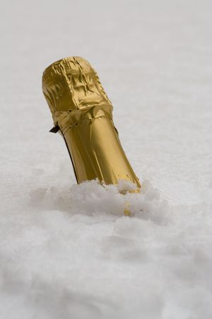 champagne in the ice Stock Photo - 6123993