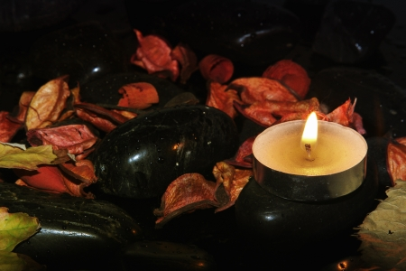 wellness and black stones Stock Photo - 17102009