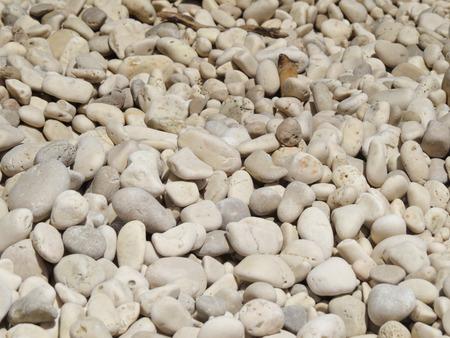 white stones on the beach photo
