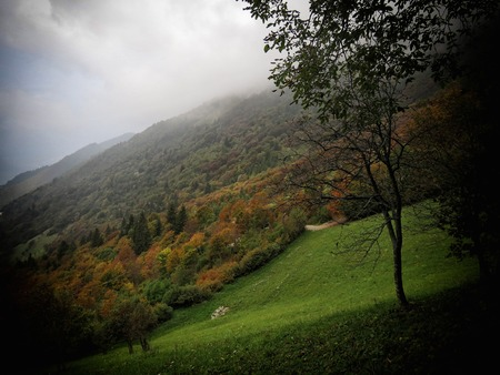 a view of autumn colors photo
